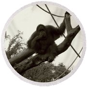 Round Beach Towel featuring the photograph Thinking Of You Sepia by Joseph Baril