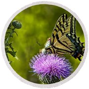 Round Beach Towel featuring the photograph Thistle Do Just Fine by Gary Holmes