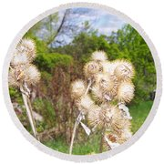 Thistle Me This Round Beach Towel