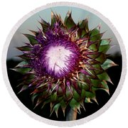 Thistle Night Round Beach Towel