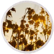 Round Beach Towel featuring the photograph Thistles In The Sunset by Chevy Fleet