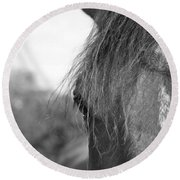 Thoroughbred B/w Round Beach Towel