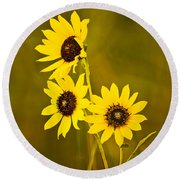 Round Beach Towel featuring the photograph A Trio Of Black Eyed Susans by Gary Slawsky