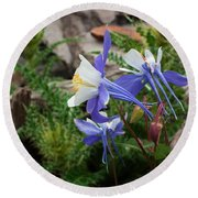Three Columbine Round Beach Towel