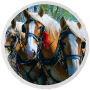 Three Horses Break Time  Round Beach Towel