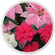 Three Pink Poinsettias Round Beach Towel
