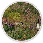 Round Beach Towel featuring the photograph Three Quiet Canada Geese by Susan Wiedmann
