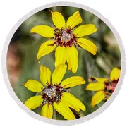 Three Sister Wildflowers Round Beach Towel