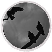 Round Beach Towel featuring the photograph Three Vultures by Bradley R Youngberg