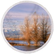 Three Willow Trees Round Beach Towel