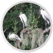 Three Wood Storks Round Beach Towel