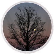 Through The Boughs Landscape Round Beach Towel by Dan Stone