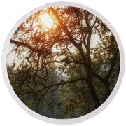 Round Beach Towel featuring the photograph Through The Trees by Melanie Lankford Photography