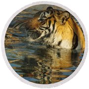 Tiger 3 Round Beach Towel