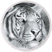Tiger Round Beach Towel by Greg Joens