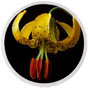 Tiger Lily Round Beach Towel by Jeff Goulden