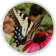 Tiger Swallowtail  Round Beach Towel by James C Thomas