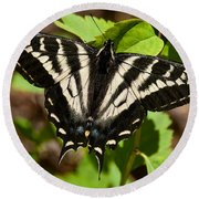 Tiger Swallowtail Butterfly Round Beach Towel by Jeff Goulden