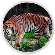 Tiger Tale Round Beach Towel