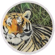 Round Beach Towel featuring the painting Tigress by Jeanne Fischer