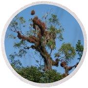 Tikal Furry Tree Round Beach Towel