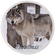 Timber Wolf Christmas Card English 3 Round Beach Towel