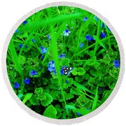 Round Beach Towel featuring the photograph Tiny Butterfly by Sherman Perry