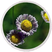 Tiny Little Weed Round Beach Towel