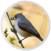 Titmouse In Gold Round Beach Towel
