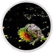 Toad In A Lions Den Round Beach Towel