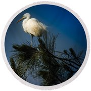 On Top Of The World Round Beach Towel by Karen Wiles