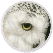 Round Beach Towel featuring the painting Topaz In The Snow by Pat Erickson