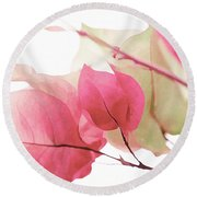 Touch Of Pink Bougainvillea Round Beach Towel