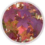 Round Beach Towel featuring the photograph Traces Of Fall by Andrea Anderegg