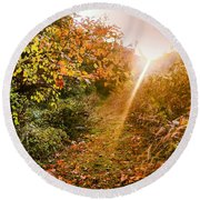 Fall Trail Round Beach Towel