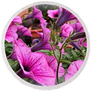 Round Beach Towel featuring the photograph Trailing Petunias by Clare Bevan