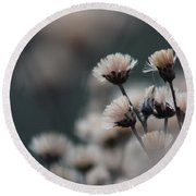 Round Beach Towel featuring the photograph Tranquil by Bruce Patrick Smith