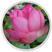 Tranquil Lotus  Round Beach Towel