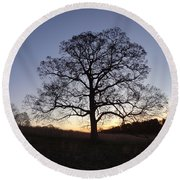 Tree At Dawn Round Beach Towel by Michael Porchik