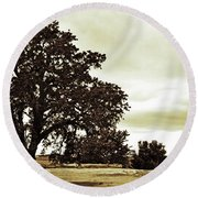 Tree At End Of Runway Round Beach Towel
