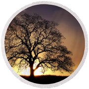 Tree At Sunrise In The Fog Round Beach Towel