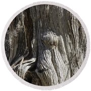 Round Beach Towel featuring the photograph Tree Bark No. 3 by Lynn Palmer