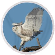 Tree Dancer Round Beach Towel by Heather King