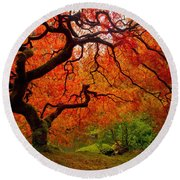 Tree Fire Round Beach Towel