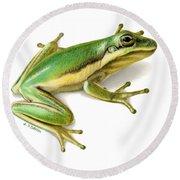 Green Tree Frog Round Beach Towel