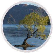 Round Beach Towel featuring the photograph Tree In Lake Wanaka by Stuart Litoff