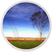 Tree In The Murnauer Moos Round Beach Towel