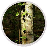 Tree In The Woods Round Beach Towel by Pamela Critchlow