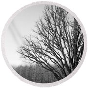 Tree In Winter 2 Round Beach Towel