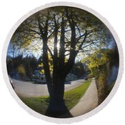 Tree On The Street Round Beach Towel by Cathie Douglas